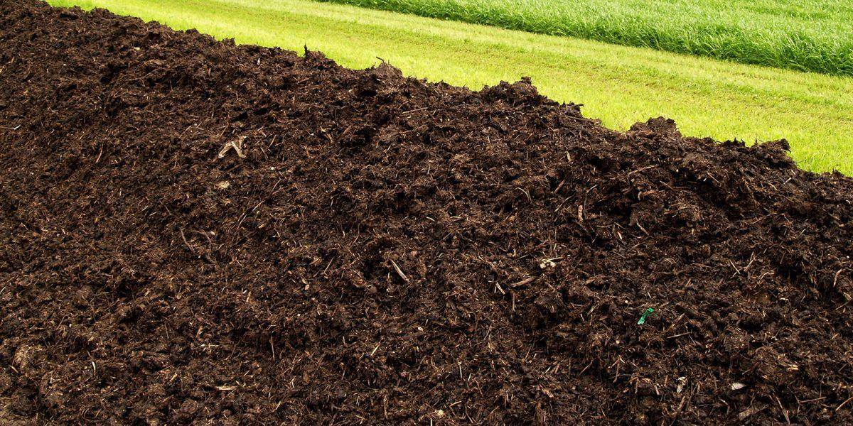Grüngutkompost aus reinem Ast-, Strauchschnitt sowie Gras